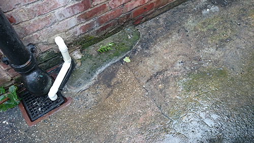 Blocked drain Avonmouth