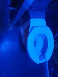 blocked toilet blocked drain bishopston